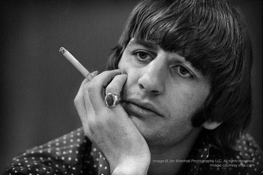 Ringo in thought