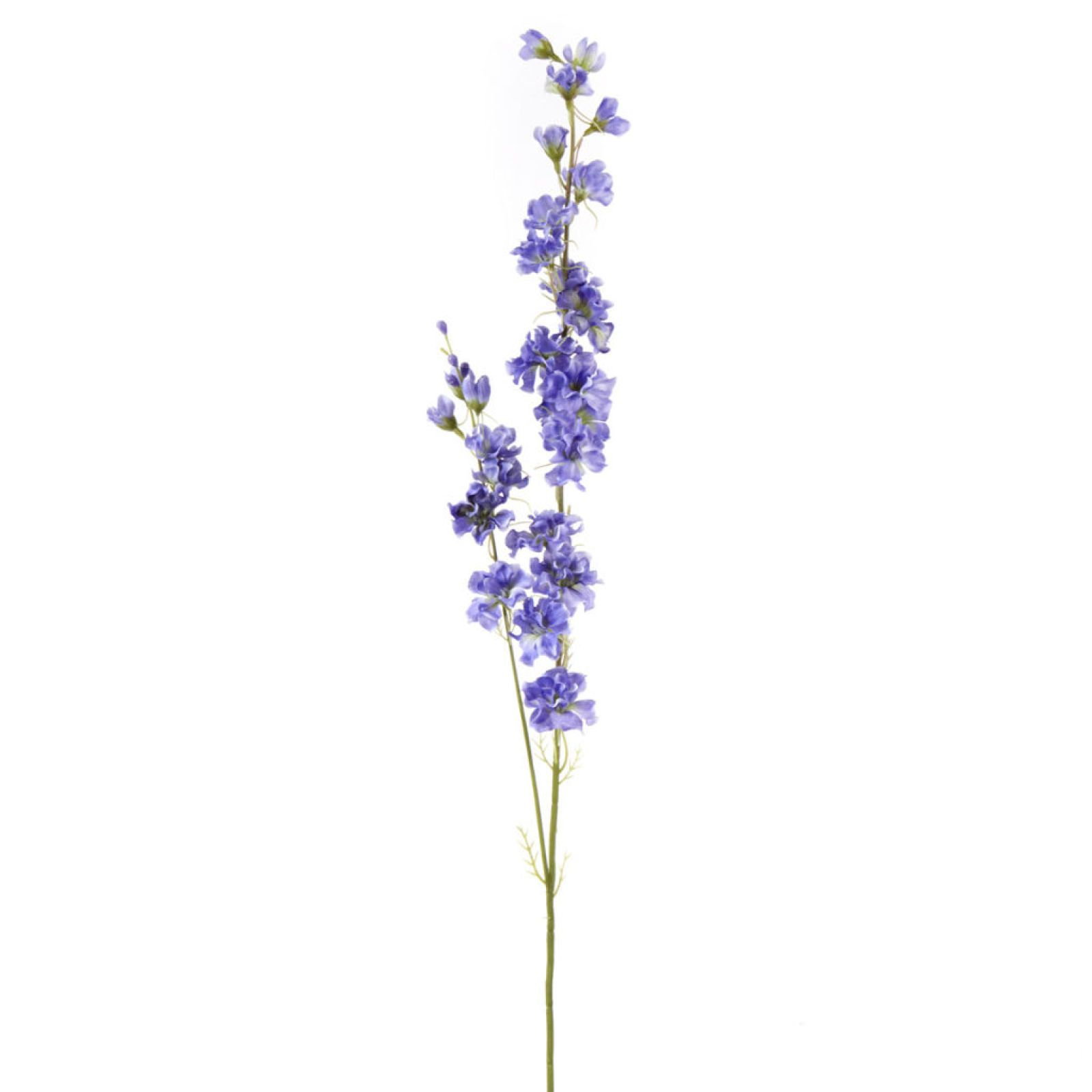 The July birth flower, these lush flowers symbolize an open heart and ardent attachment and convey a feeling of lightness and levity. Create a wonderful floral arrangement with this lavender delphiniu