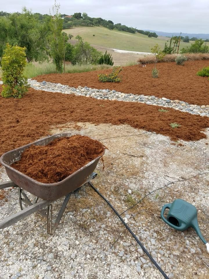 Gorilla Hair mulch is great at suppressing weeds