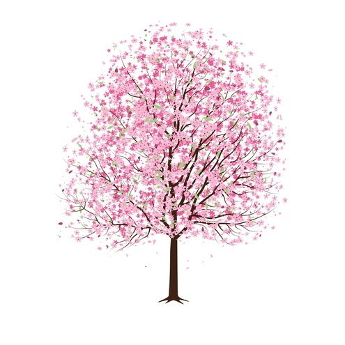 Arte Arvore Desenho Design Rabisco Tatto árvores Estilizadas