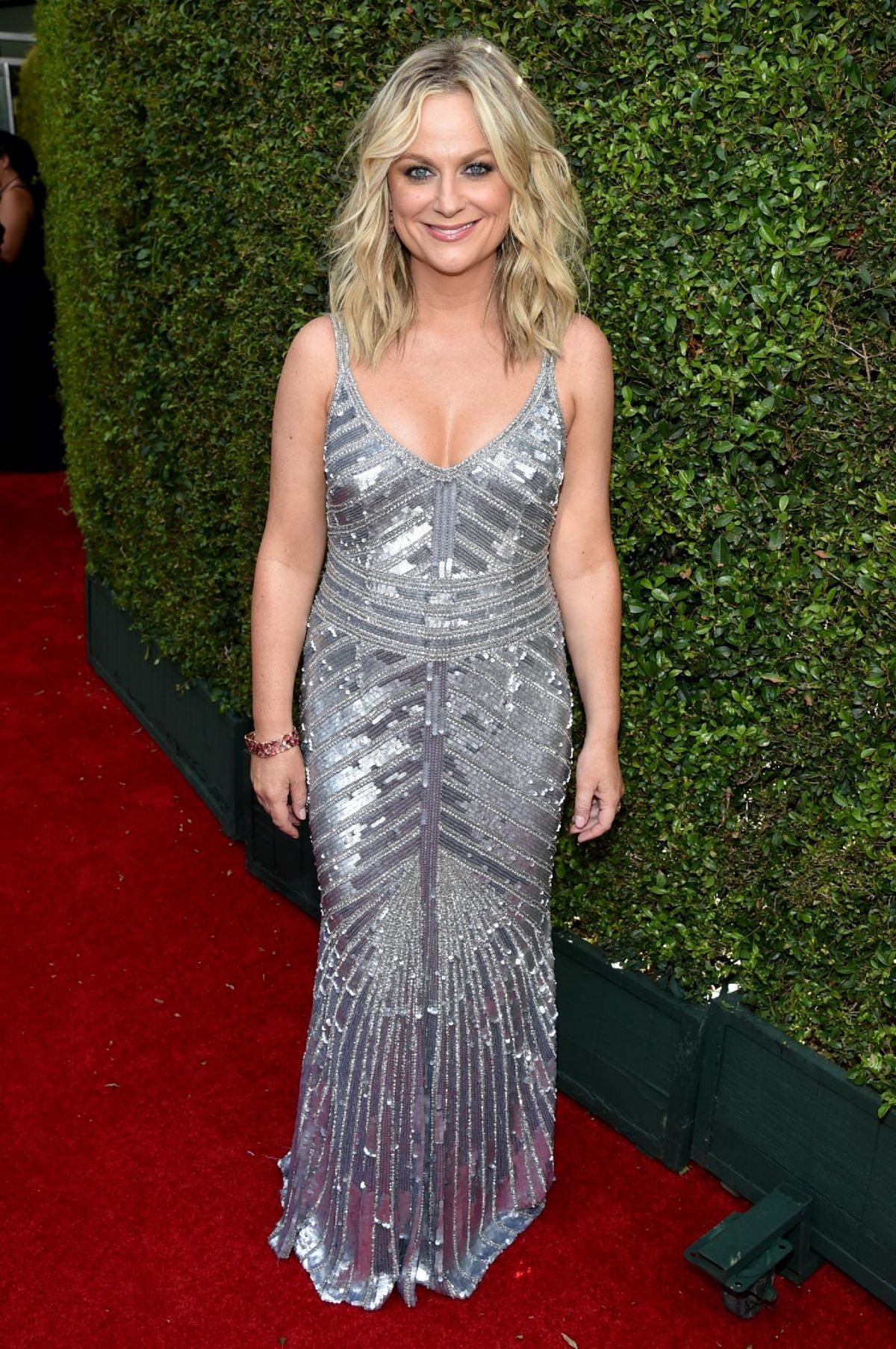YinG amy poehler. Can see how her mouth and nose makes sharp points. Can see how dress wants to elongate her curves.