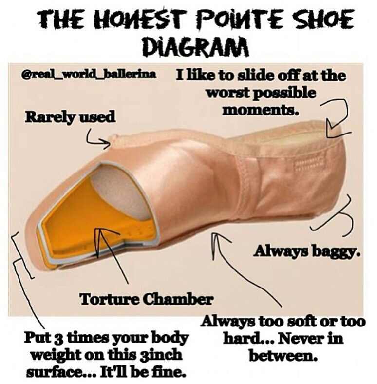 The Honest Pointe Shoe Diagram Things Dancers Understand