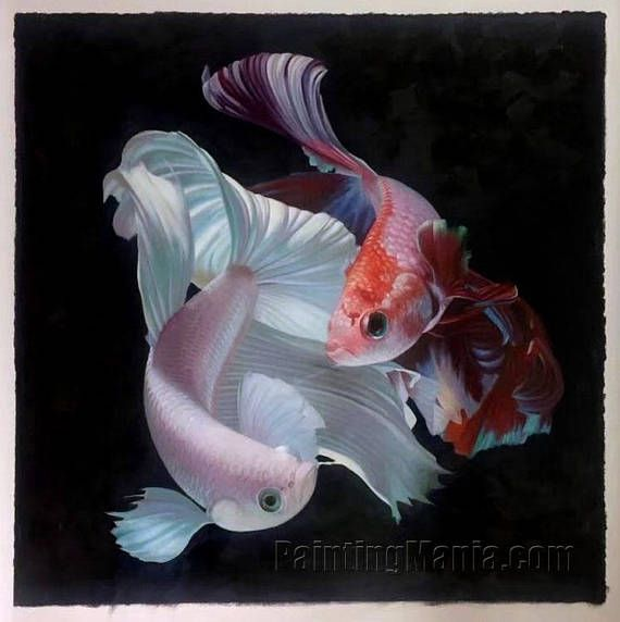 Fighting of Colorful Betta Fish Isolated on Black Background - high quality hand-painted original oil painting, beautiful modern home decor
