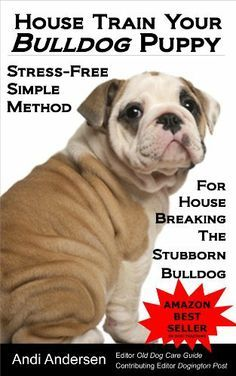 House Train Your Bulldog Puppy A Stress Free Simple Method For