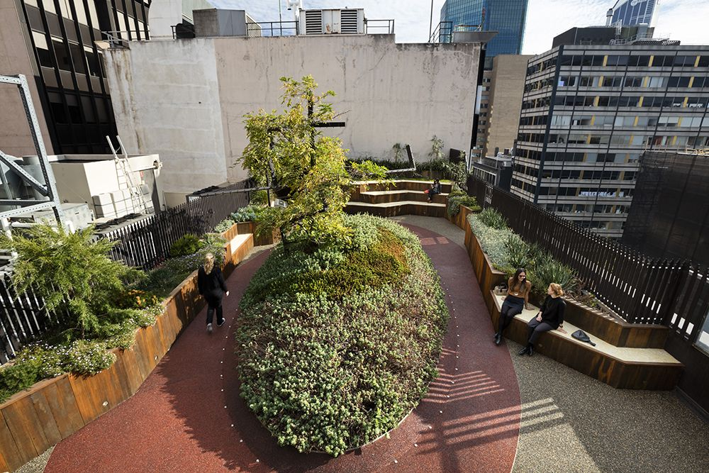 Why We Design Rooftop Gardens, Not Just Green Roofs ...