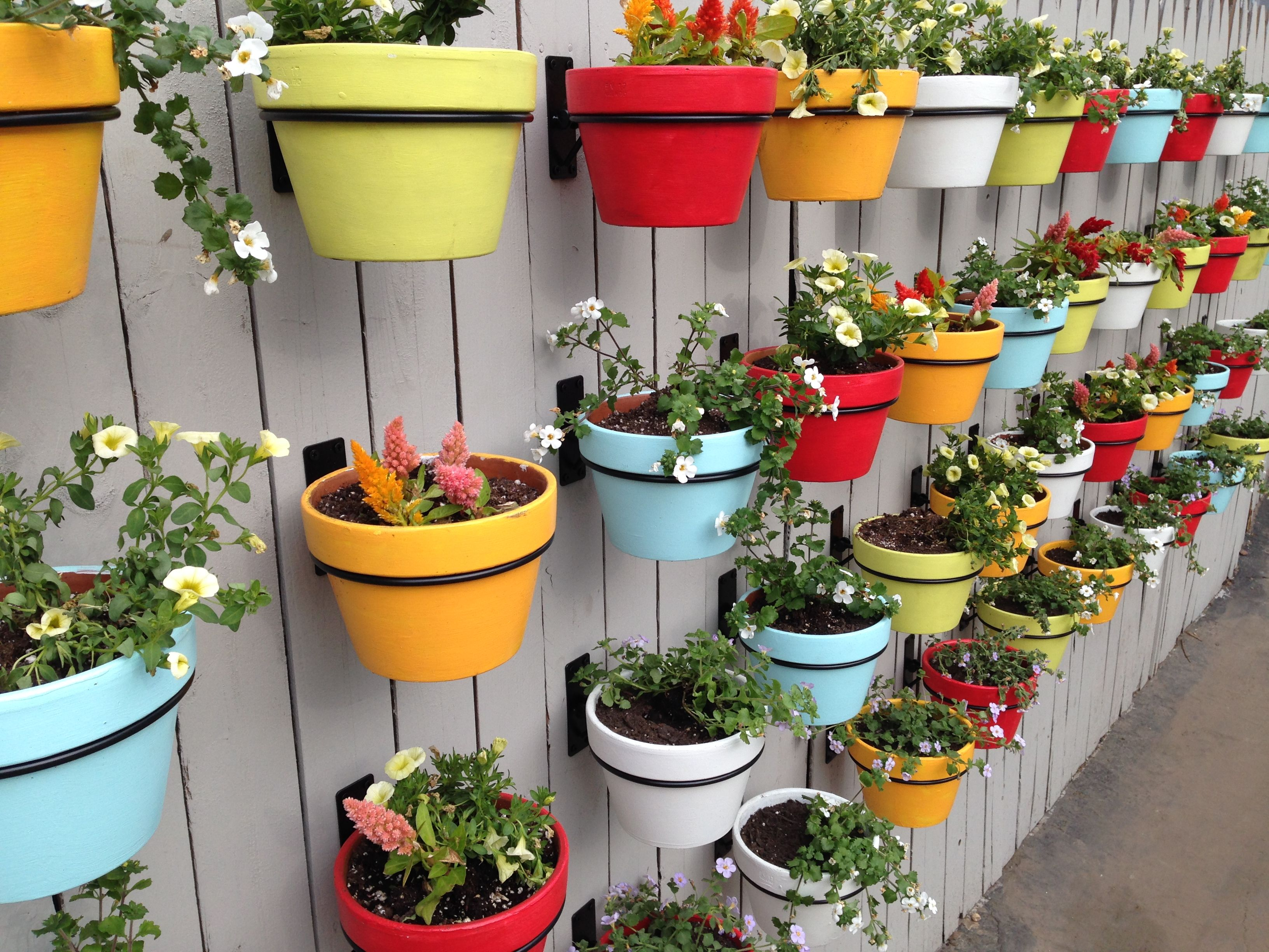 Easy Diy For Your Backyard A Colorful Living Wall Paint Basic Flower Pots A Variety Of Bright Co Flower Pots Outdoor Herb Garden Pots Backyard Garden Design
