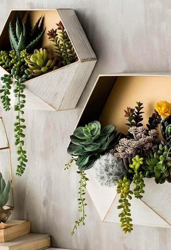 Sukkulenten: Hauptarten und Dekorationsideen #cactus #garden #echeveria #arrangement #draußen #tontopfecheveria #vermehren