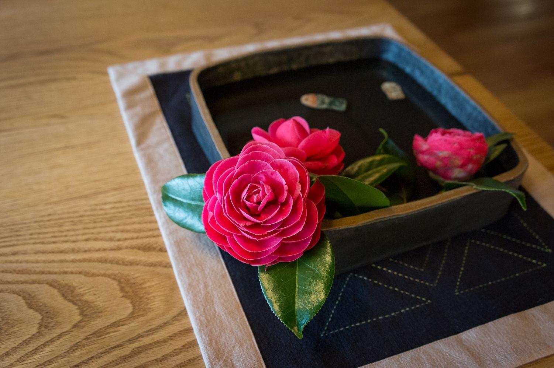 美しい季節の椿の花。Beautiful camellia flower.