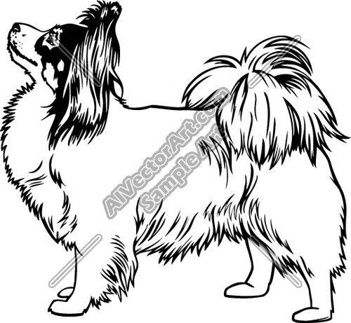 Papillon Dog Papillon Dog Dog Coloring Page Dog Drawing