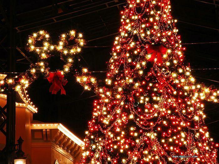 Disneyland Christmas Photo By Matthew Hansen