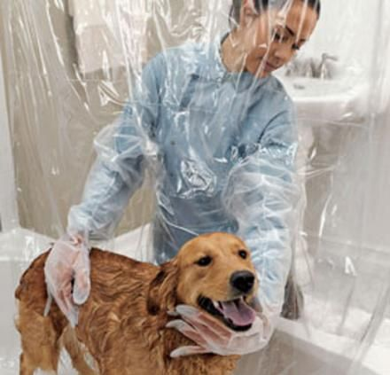 Pet Shower Curtain With Bubble Boy Arms Pets