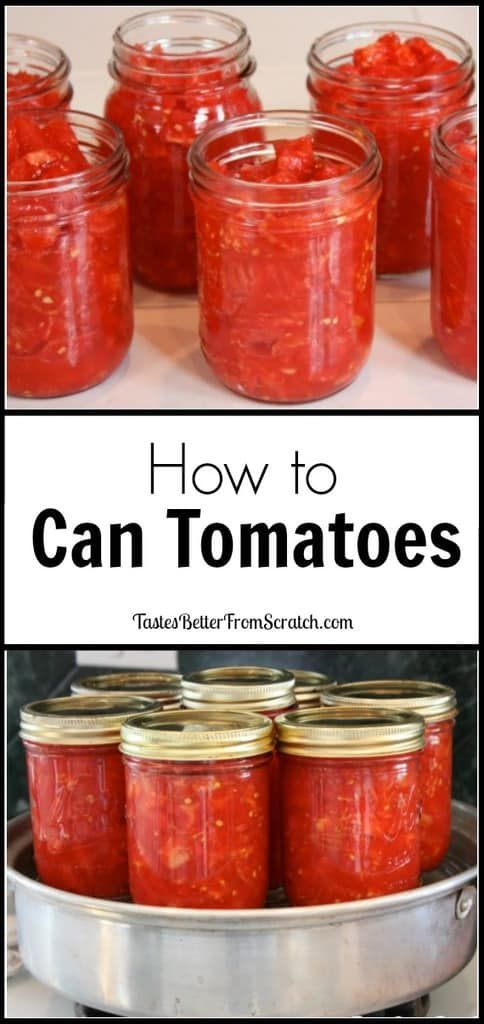 to make Canned Tomatoes This is a simple tutorial for how to make canned tomatoes. This is so easy, anyone can do it and enjoy canned tomatoes all year long at a low cost. | This is a simple tutorial for how to make canned tomatoes. This is so easy, anyone can do it and enjoy canned tomatoes all year long at a low cost. |