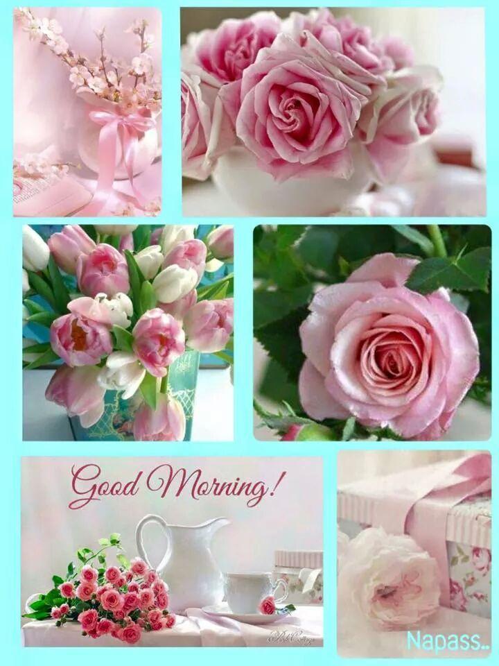 Good Morning All My Dear Friends : Chamarichobdee on friends good morning and mornings