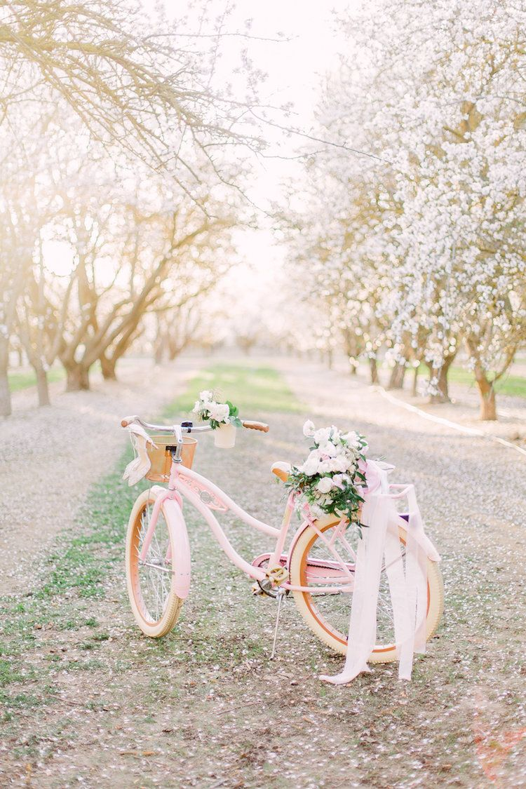 Incredible Blossom-filled Almond Orchard Wedding Inspiration – Bike & Cycling