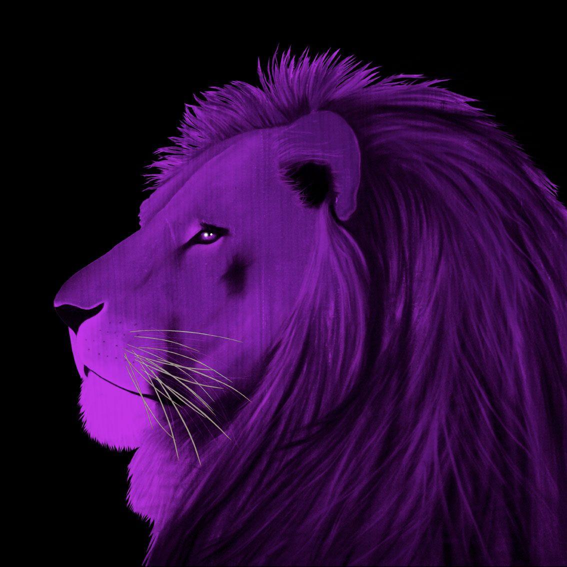 lion violet lion pop prints animal paintings love the color