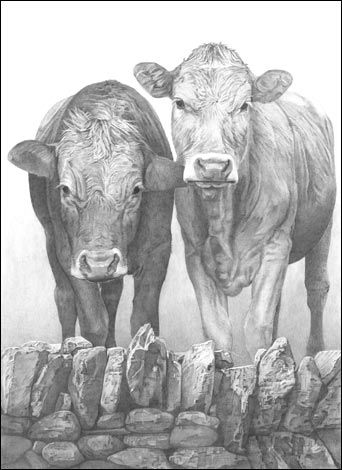 Pencil Drawing-John S. Gibbs Art 3 project #1 | Publish with Glogster! Description from glogster.com. I searched for this on bing.com/images