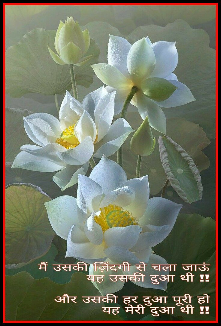 Flowers images with quotes in hindi wallpapersimages pin by kaivalya desai on hindi quotes izmirmasajfo