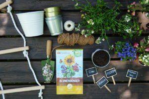 Pflanzen Als Sichtschutz Unsere Top 15 Fur Garten Balkon Plantura In 2020 Bodendecker Hangepflanzen Bienenfreundliche Balkonpflanzen