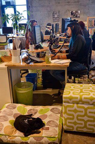 Office Space: The Honest Kitchen. #BestOfSD