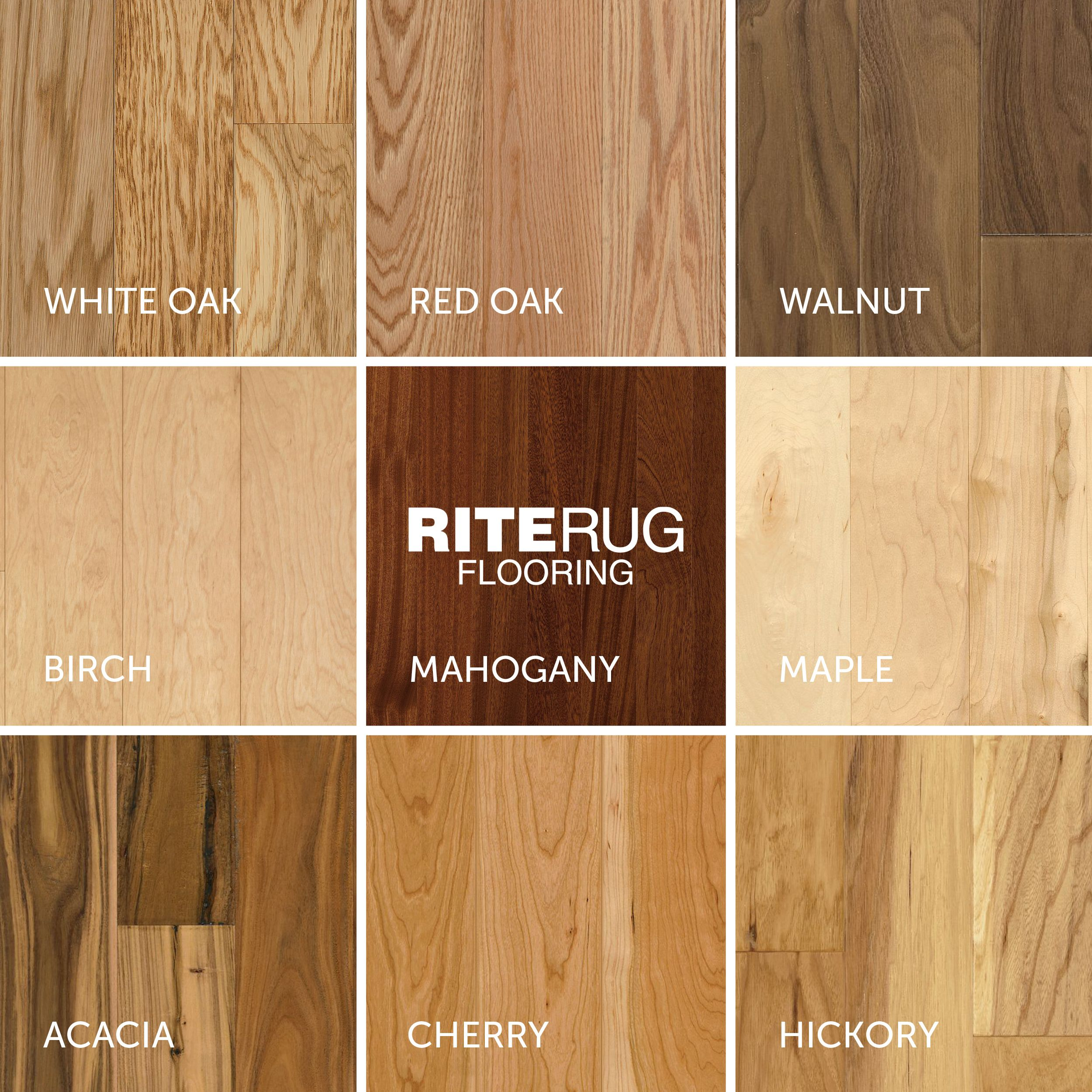 Natural Wood Species Chart Identify Your Favorite Look