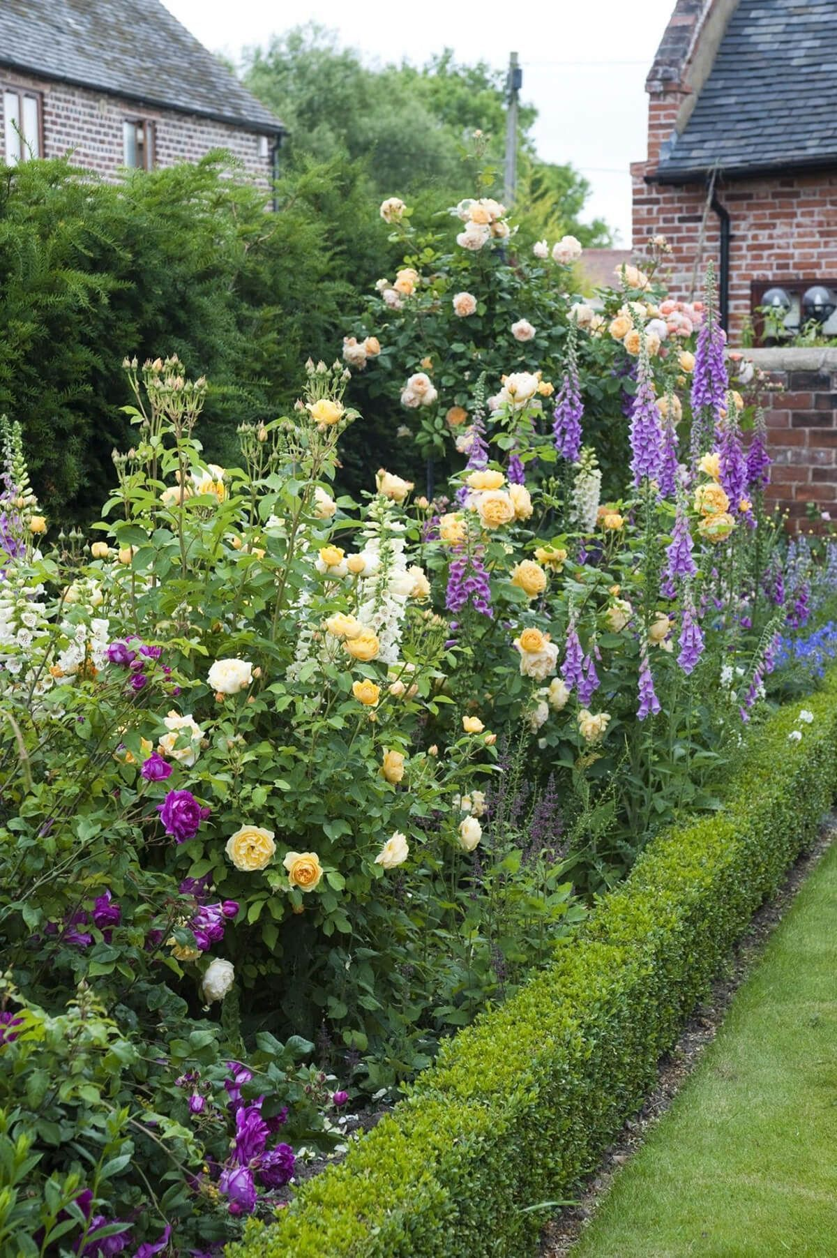 tall border with roses and snapdragons #englishgardens | landscaping