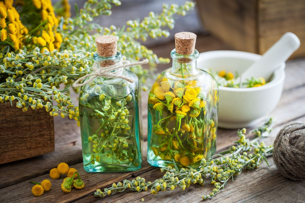 ما طرق منع الحمل بالأعشاب وطريقة تحضيرها موسوعة Herbal Tinctures Herbalism Herbs