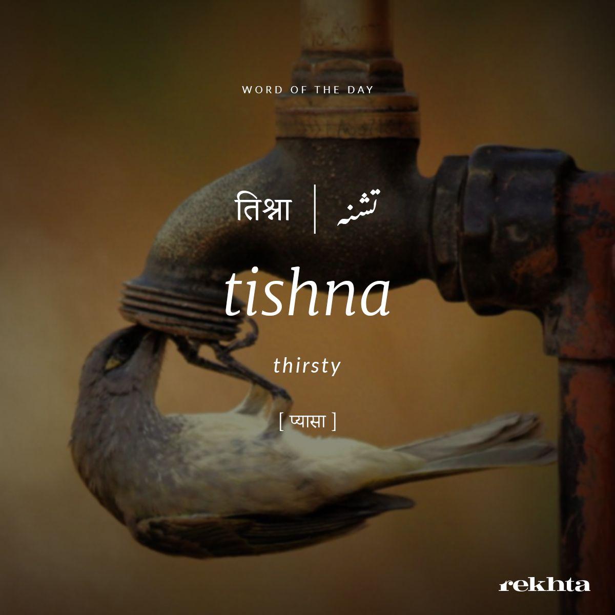 tishna  thirsty   Hindi words, Urdu love words, Urdu words with ...