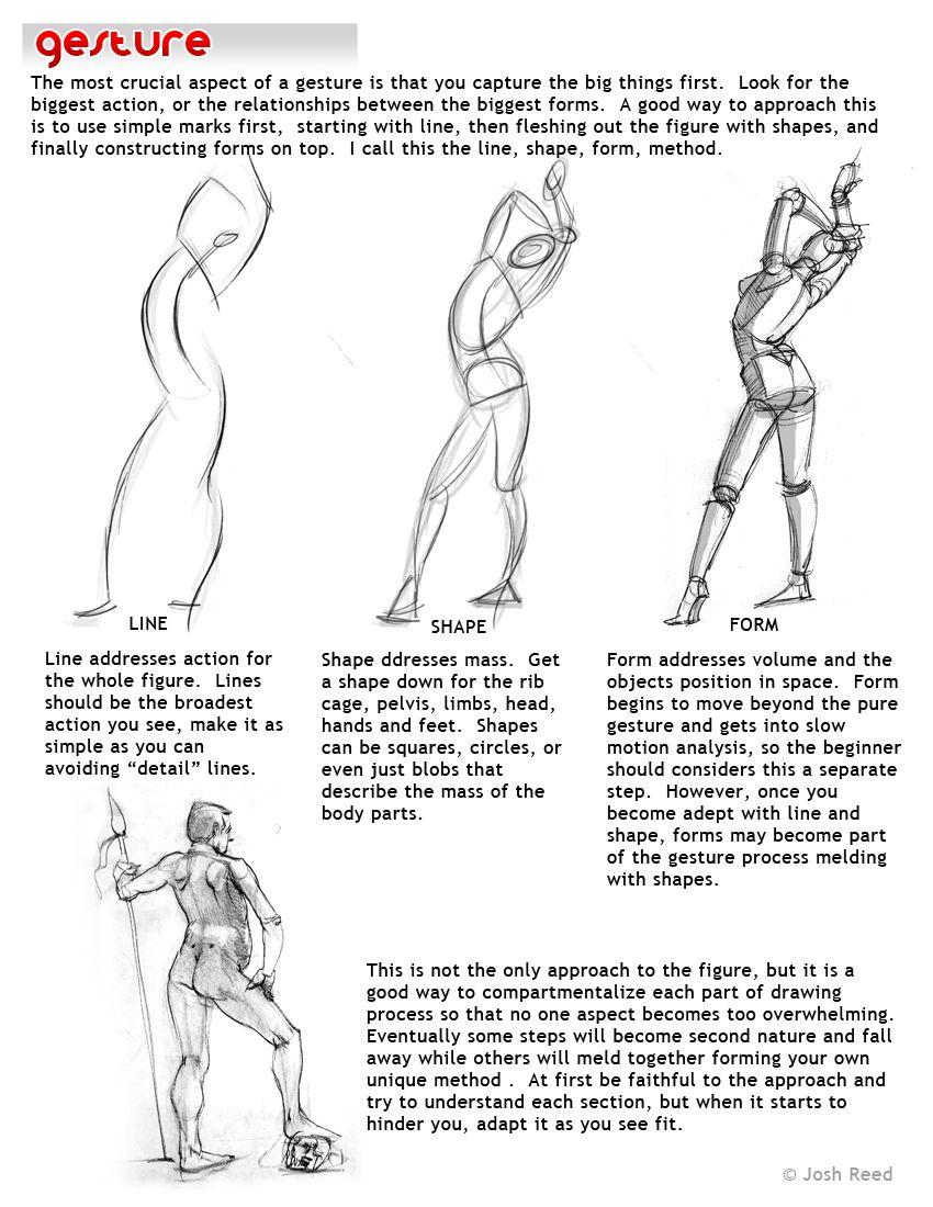 En action | Figura | Pinterest | Cuerpo humano, Cuerpo y Anatomía