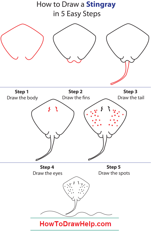 How to Draw a Dog Step by Step Instructions How to draw
