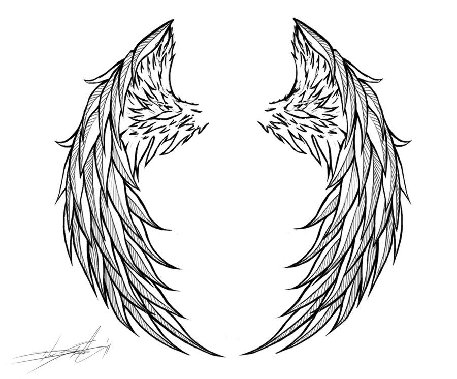 Angel Wings Wings Tattoo Angel Wings Tattoo Wings Drawing