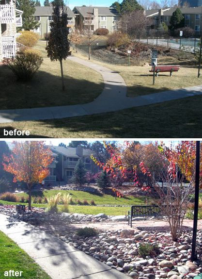 Commercial site landscape renovation before and after for Commercial landscaping