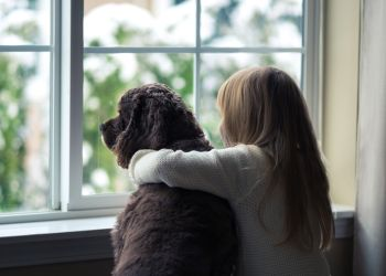 How Long Can Indoor Pets Play Outside In Winter With Images Kids House Dogs Pet Ownership