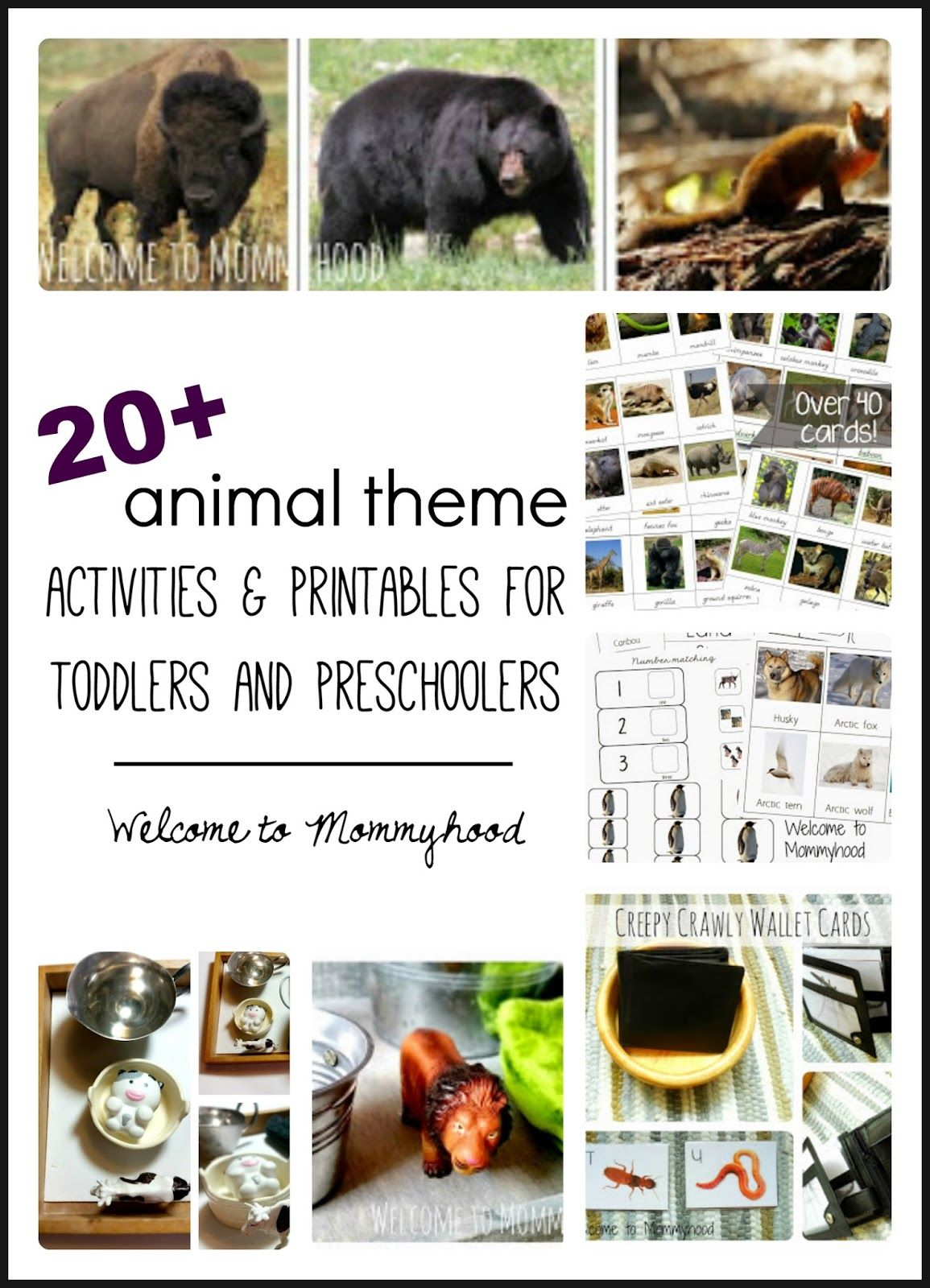 20 Montessori Inspired Animal Activities And Printables