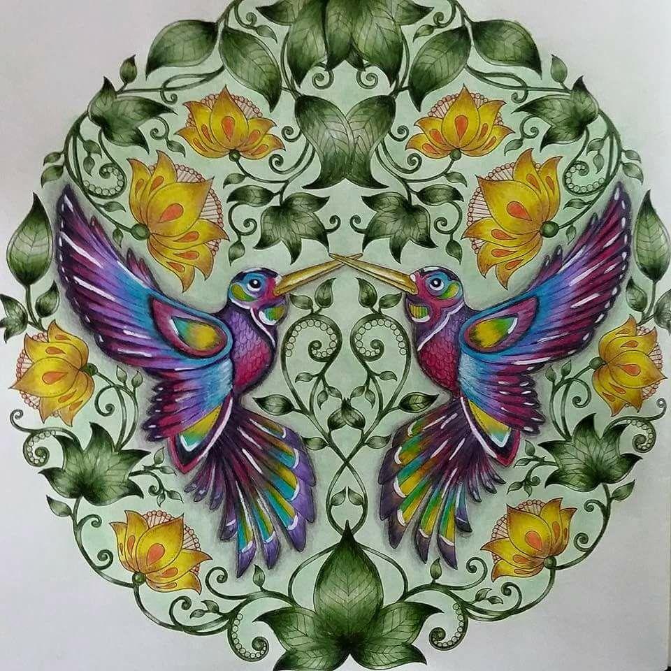 Humming Birds Secret Garden Beija Flores Jardim Secreto Johanna Basford Dibujos Para Colorear Adultos Jardines Secretos Arte Terapia