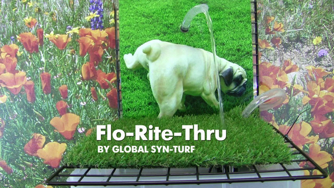Artificial Grass for Pets by GST Artificial grass for