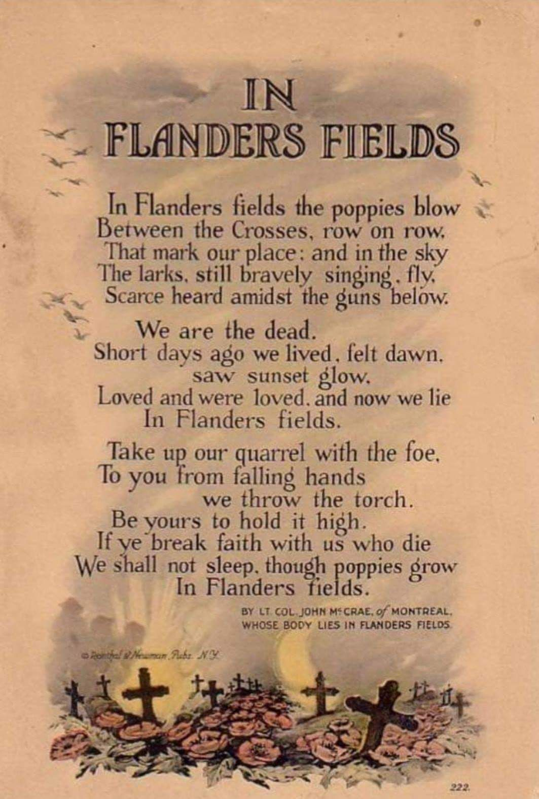 Pin By Chelle Montrond On Food For Thought Remembrance Day History World War One