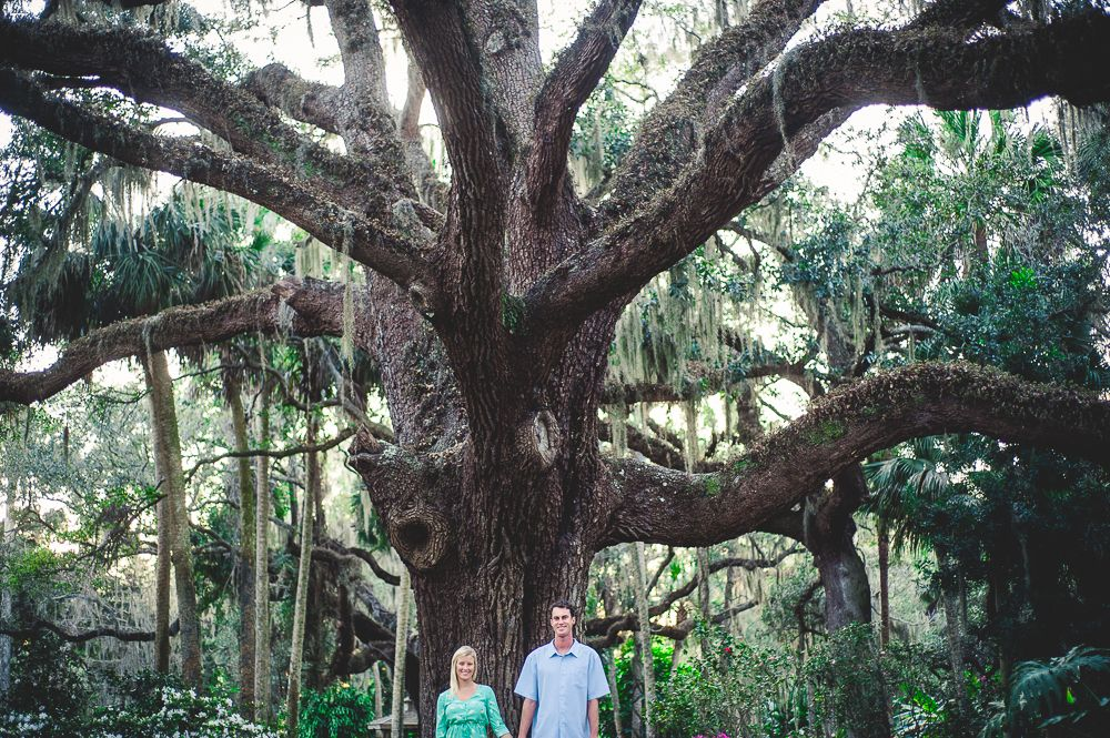 Engagement pictures at Washington Oaks Gardens State Park in Florida
