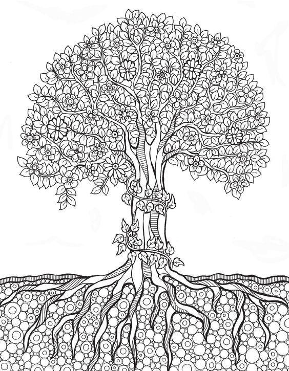 9782815307086 Ext Mandala Coloring Pages Mandala Coloring Tree Coloring Page
