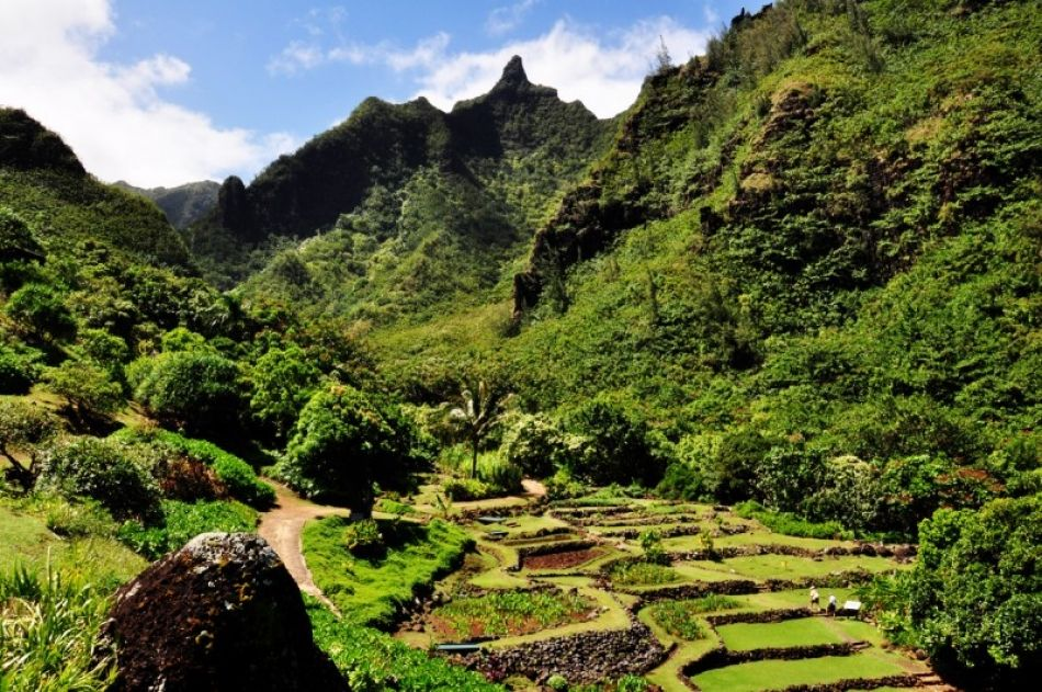 Limahuli Garden & Preserve | Oh the places I have been | Pinterest ...