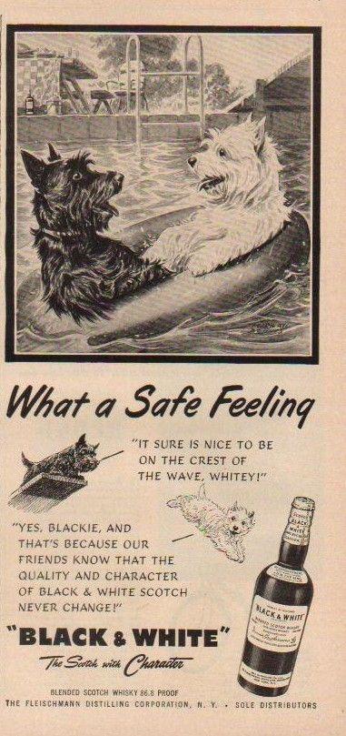 Pin On Scotties In Black White Whiskey Vintage Advertising