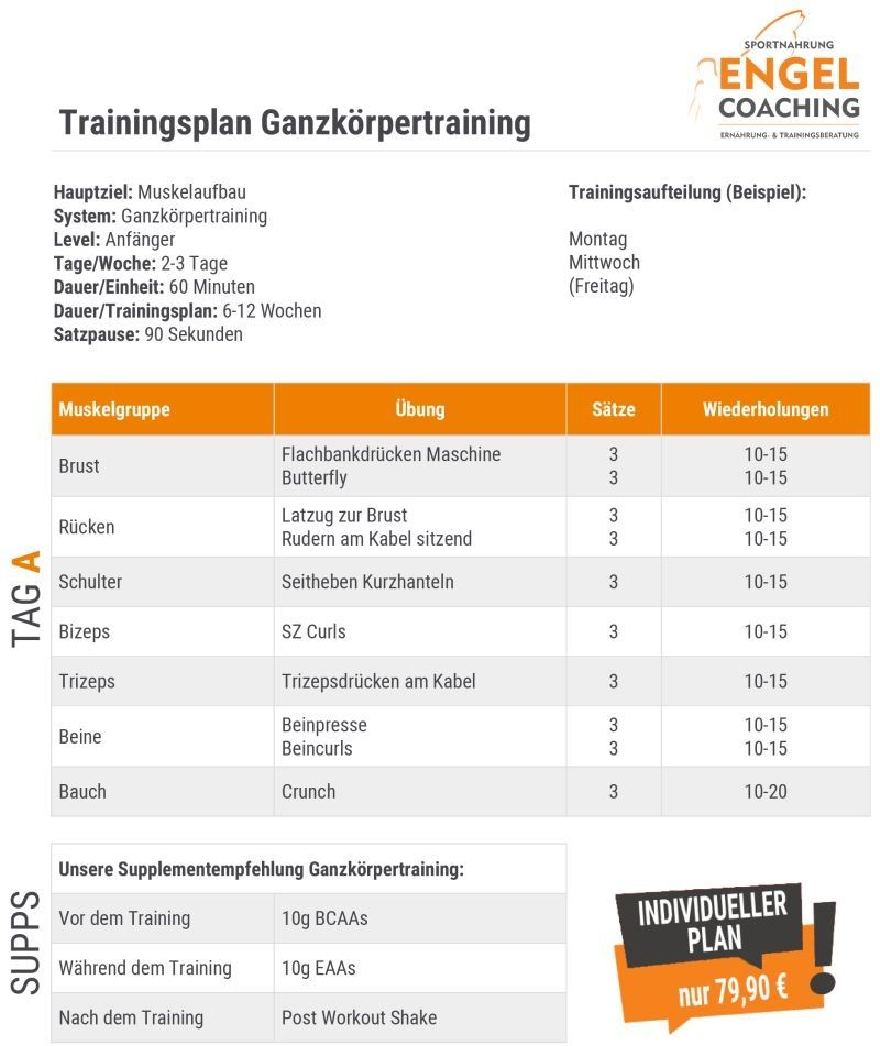 Trainingsplan Ganzkorpertraining Zum Muskelaufbau Trainingsplan Muskelaufbau Trainingsplan Muskelaufbau