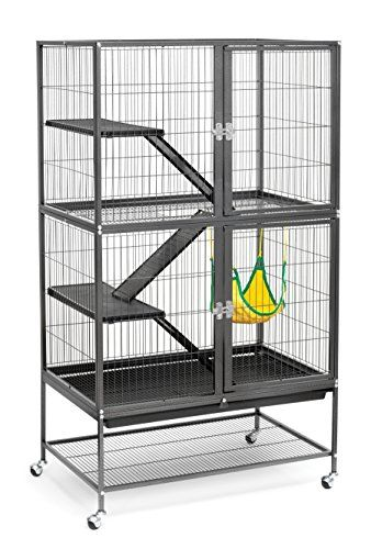 Just Imagine Your Cute Little Critter With This Pets Smallanimalproducts Ferret Cage Small Animal Cage Rat Cage
