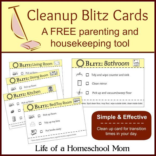 Printable House Cleaning Cards Housekeeping How To Clean Mirrors Parenting Tools