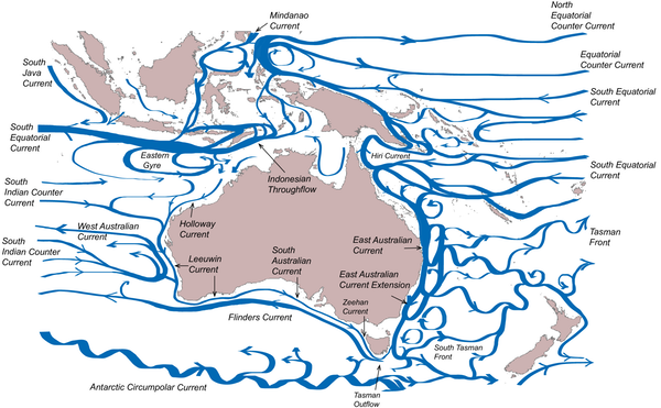 Oceans Around Australia Map.A Current Affair The Movement Of Ocean Waters Around