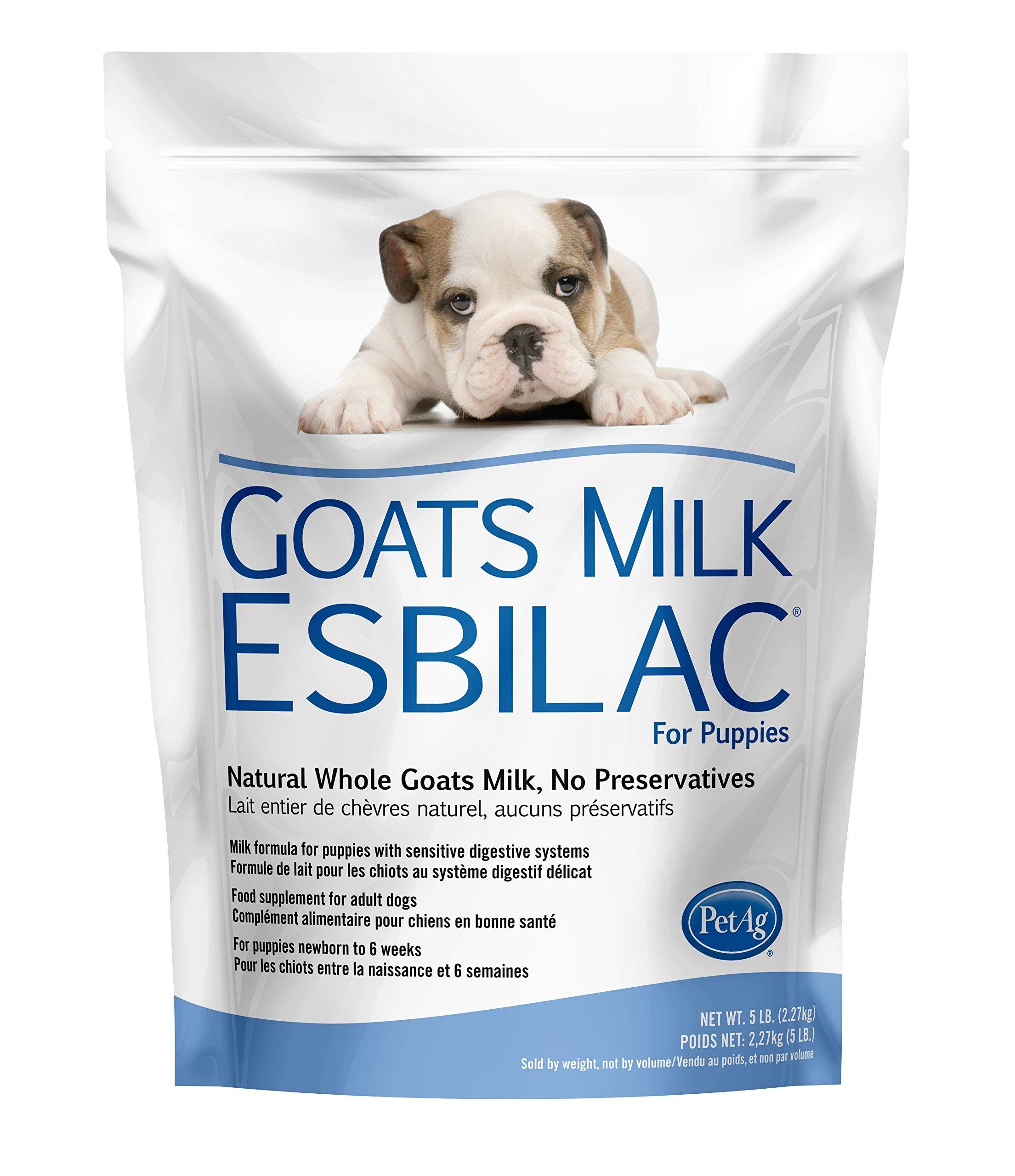 Goat S Milk Esbilac Gme Powder Milk Formula For Puppies With Sensitive Digestive Systems 5lb Click On In 2020 Milk Formula For Puppies Goat Milk Digestive System