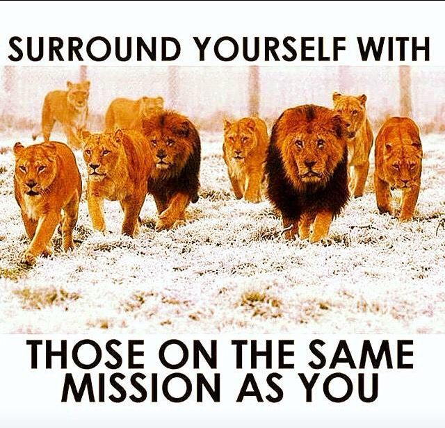 Surround Yourself With Like Minded People Words To Live By