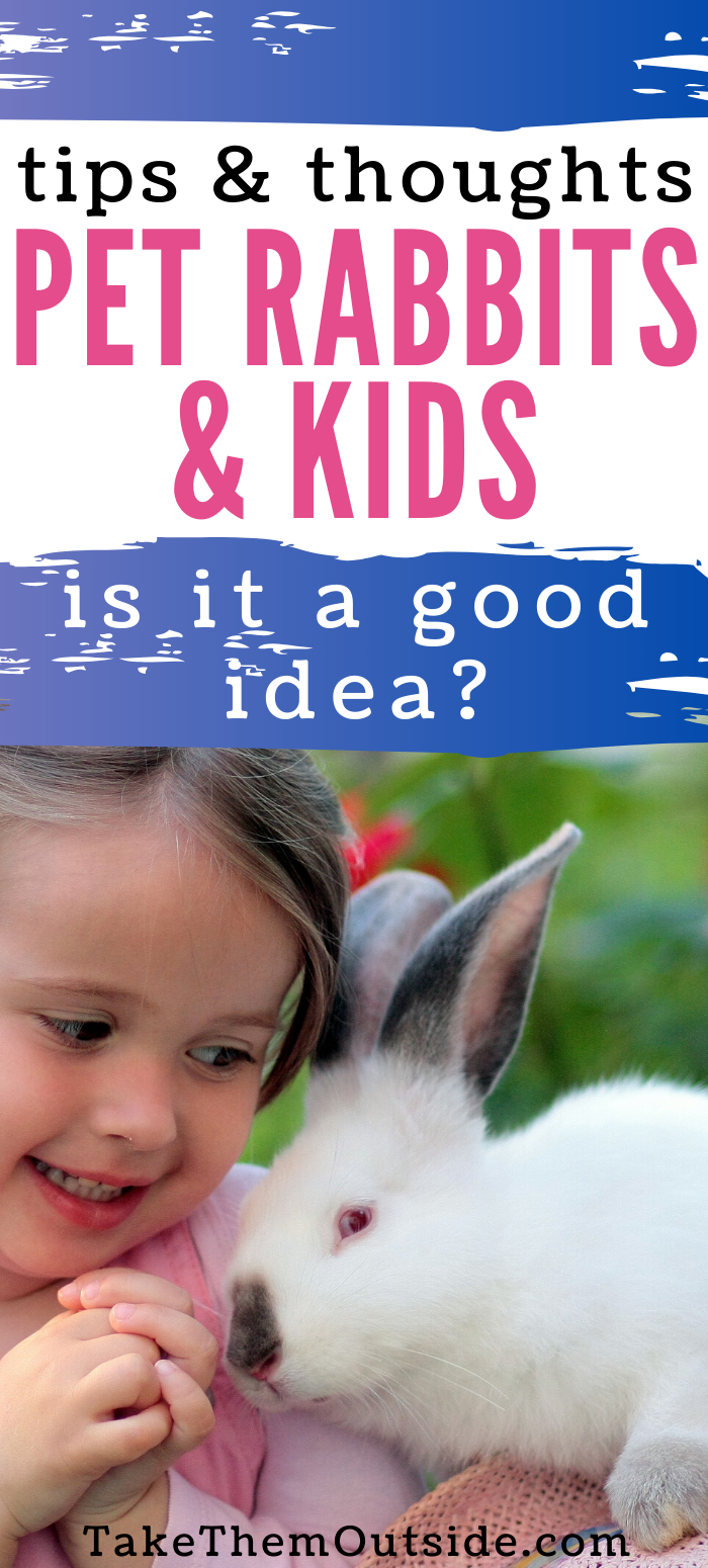 Bunnies Are The Perfect Pet For Your Kid To Love Care For Take Them Outside In 2020 Best Pets For Kids Pet Rabbit Animals For Kids
