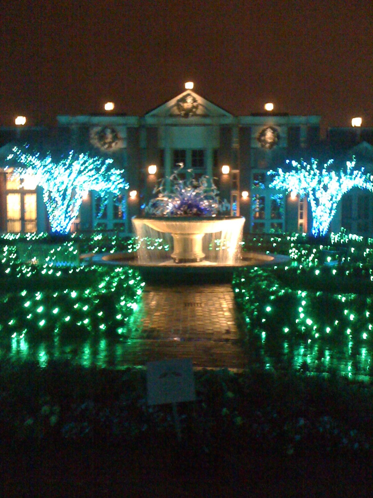 holiday lights @ atlanta botanical gardens. atlanta, georgia ...