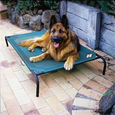 Coolaroo Steel-Framed Brunswick Green Elevated Pet Bed - Large