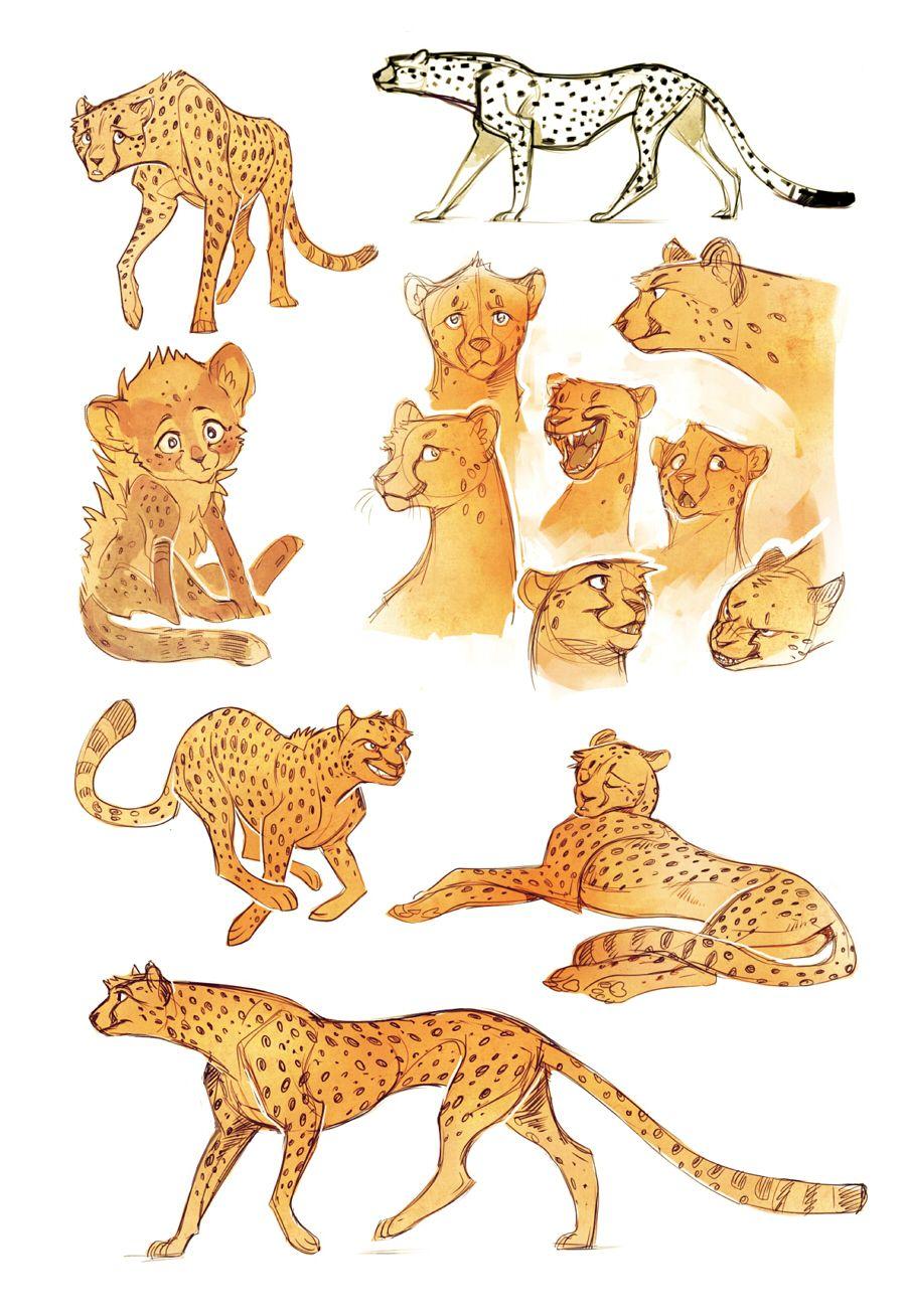 Cheetah sketches by Drkav.deviantart.com on @deviantART | Animation ...